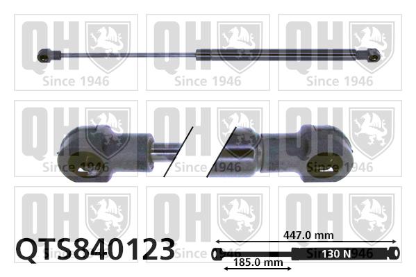 Verin de lunette QUINTON HAZELL QTS840123 (X1)
