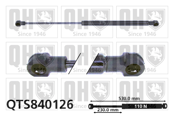 Verin de lunette QUINTON HAZELL QTS840126 (X1)
