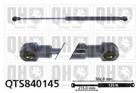 Verin de lunette QUINTON HAZELL QTS840145 (X1)