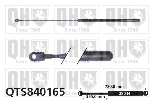 Verin de capot QUINTON HAZELL QTS840165 (X1)