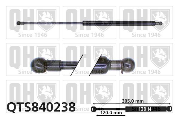 Verin de coffre QUINTON HAZELL QTS840238 (X1)
