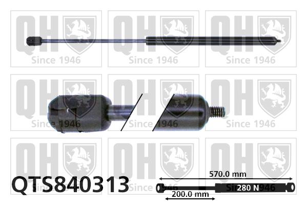 Verin de capot QUINTON HAZELL QTS840313 (X1)