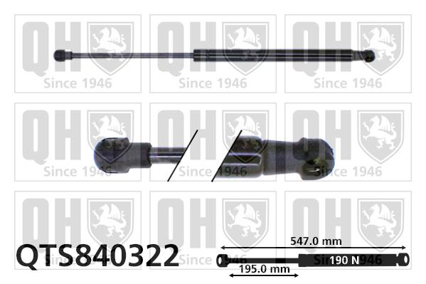 Verin de lunette QUINTON HAZELL QTS840322 (X1)