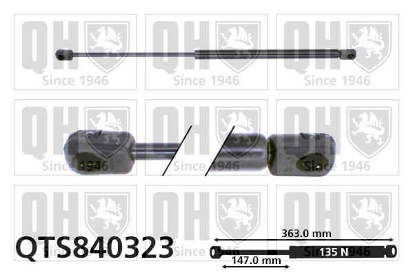 Verin de lunette QUINTON HAZELL QTS840323 (X1)
