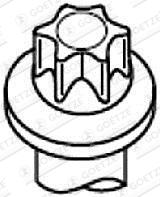 Vis de culasse GOETZE 22-29019B (X1)