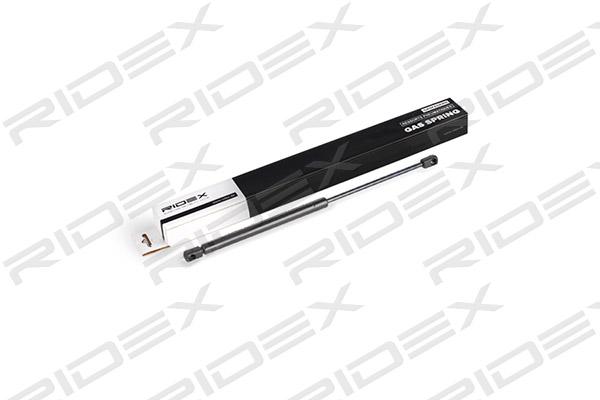 Verin de coffre RIDEX 219G0363 (X1)