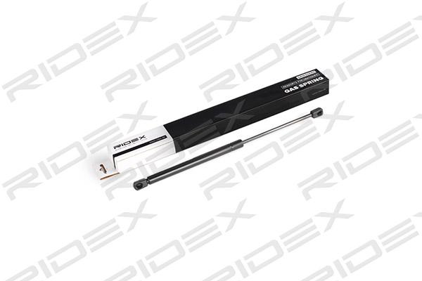 Verin de coffre RIDEX 219G0523 (X1)