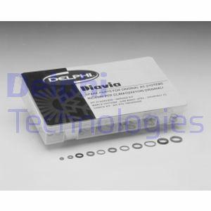 Kit de réparation DELPHI TSP0695011 (X1)