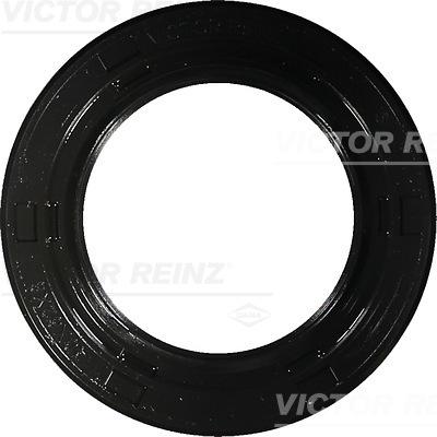 Moteur VICTOR REINZ 81-10401-00 (X1)
