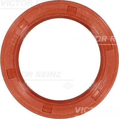 Moteur VICTOR REINZ 81-53409-00 (X1)